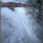 snieguotas kelias